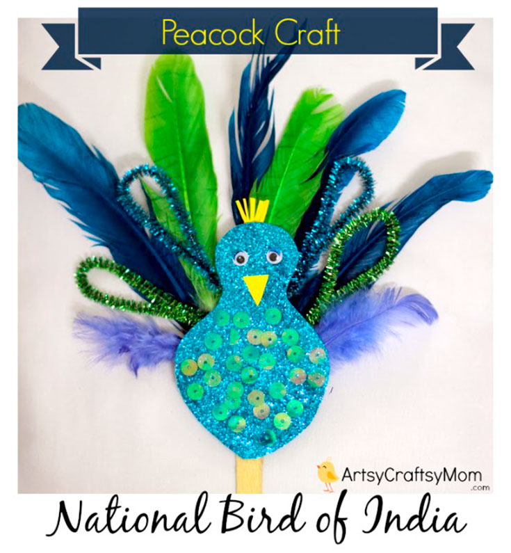 Pipecleaner Peacock Craft