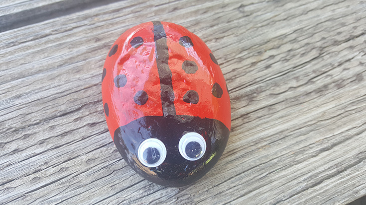 Ladybug Painted Rock Idea